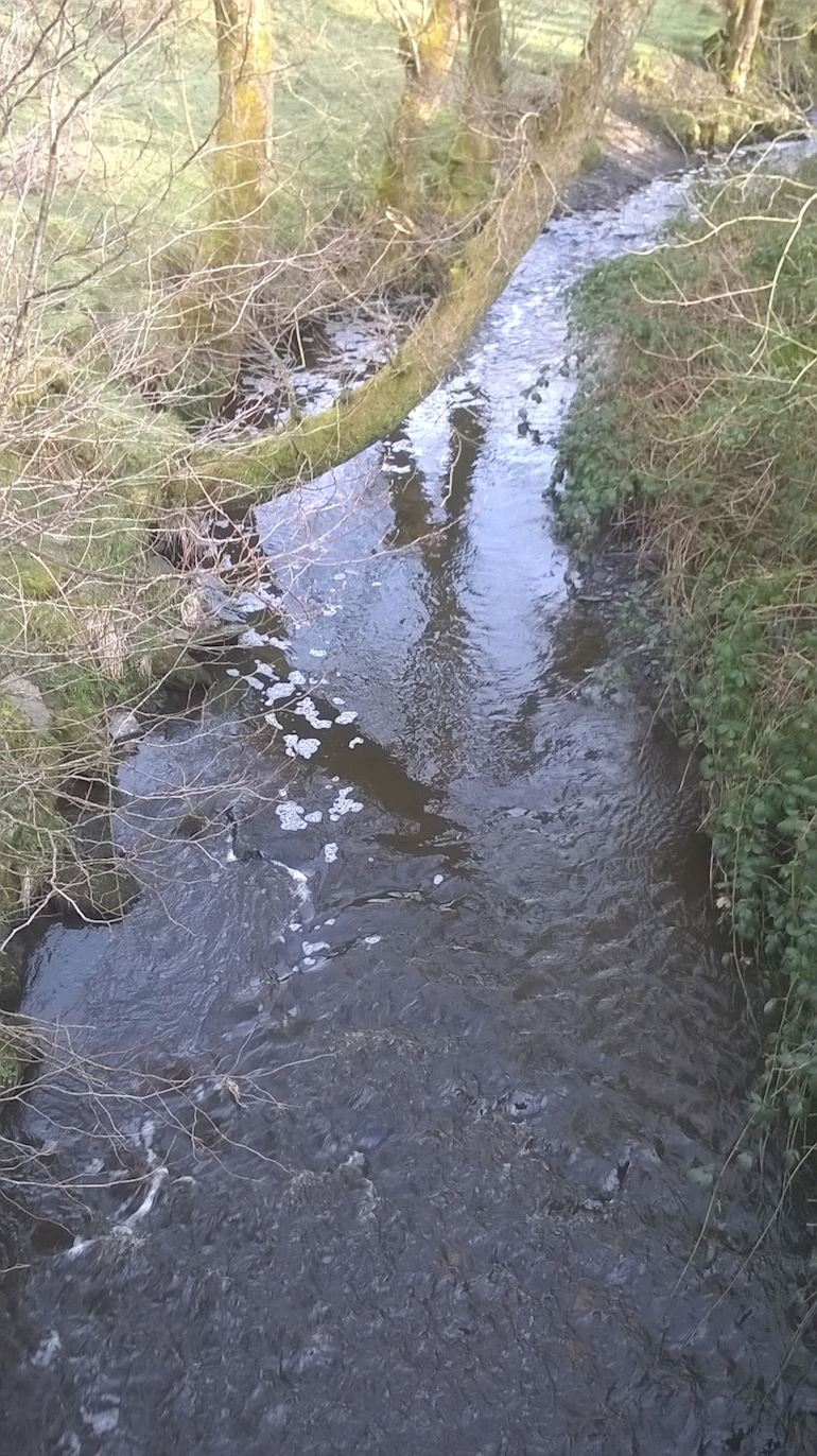 Slurry pollution in Nant Bran, near Lampeter, Ceredigion
