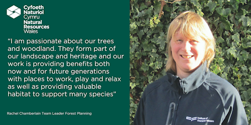 Rachel Chamberlain I am passionate about our trees and woodland. They form part of our landscape and heritage and our work is providing benefits both now and for future generations with places to work, play and relax, as well as providing valuable habitat to support many species