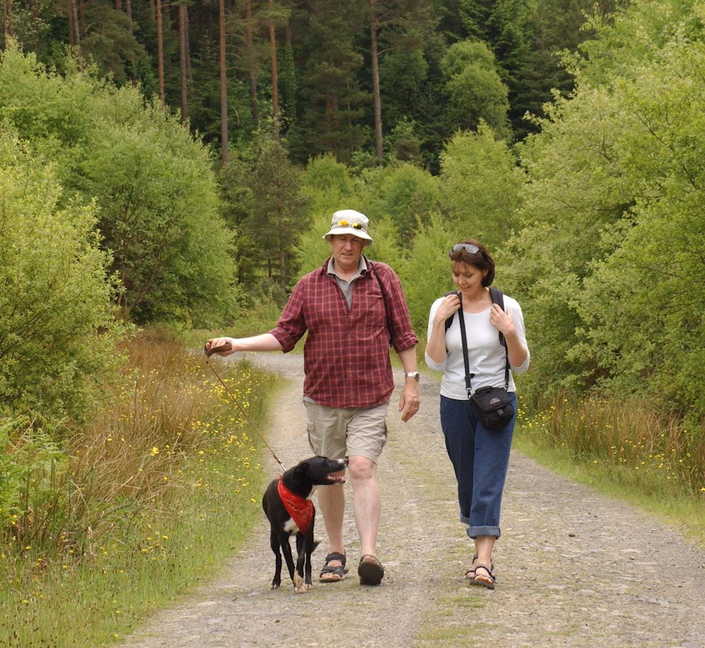 Couple walking with dog in forest