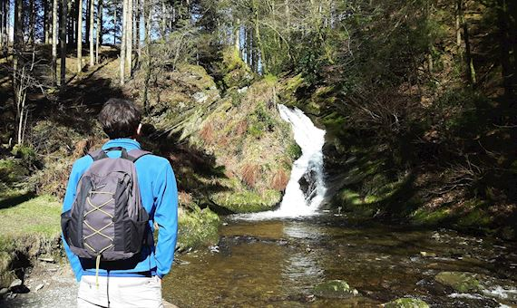 Person looking at waterfall, Hafod