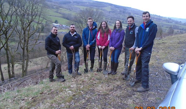 NRW and a group of volunteer members from Brecknock YCF planting the oak saplings