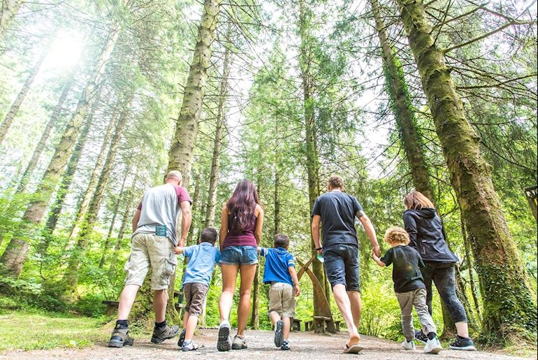 Group of people walking in the woods