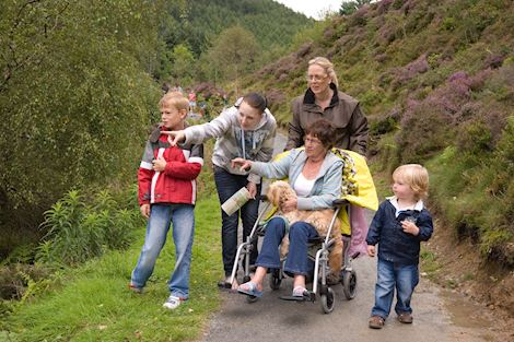 Decorative image of a family, one being a wheelchair user, on a trail