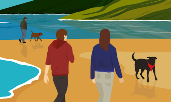 People and dogs on a beach