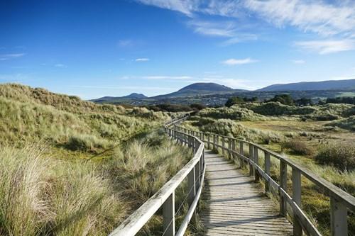 Boardwalk at Morfa Dyffryn