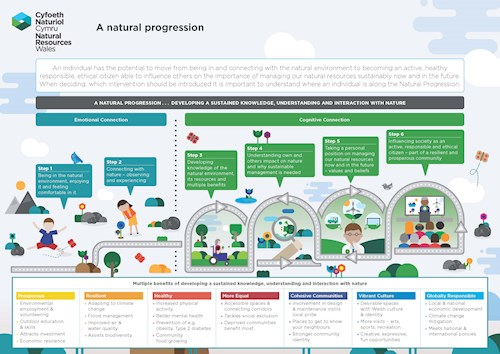 Natural progression poster