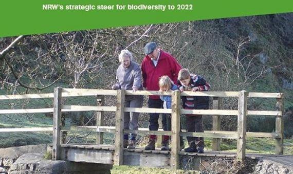 Biodiversity Steer