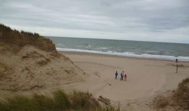 People on a beach near some sand dunes
