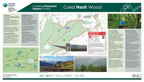 radnor forest coed nash wood