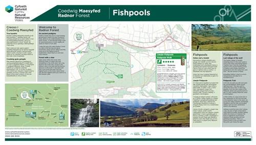 Radnor Forest - Fishpools