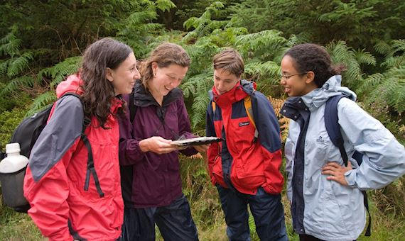 Groups of students consulting map in woodlands