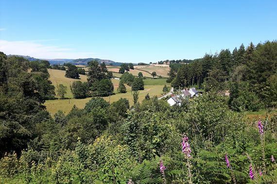 View of Cilgwyn