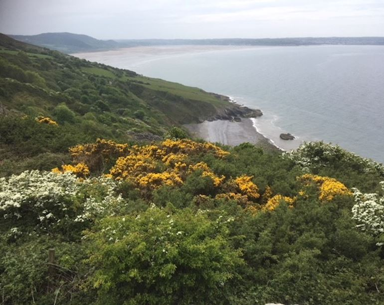 View of sea and beach in distance from cliff top