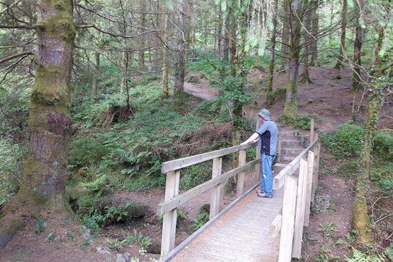 Man on bridge in Caio forest