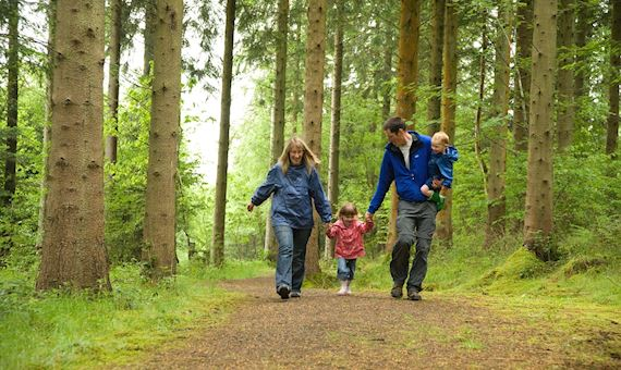 Family walking along forest path