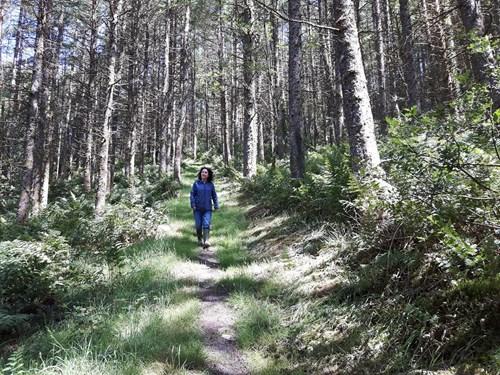 Woman on Pen y Bryn Trail