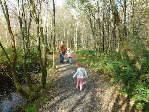 Family walking in woodland