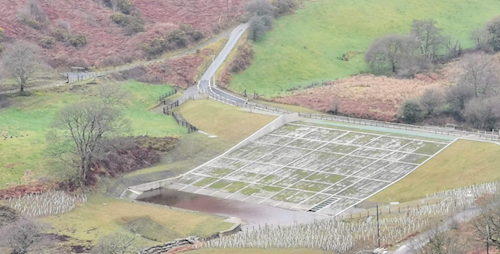 Photo of the completed flood storage embankment spanning across the valley floor, with hundreds of newly planted young trees in the foreground