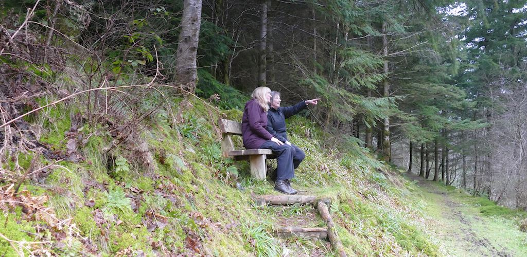 Two women on bench in woodland