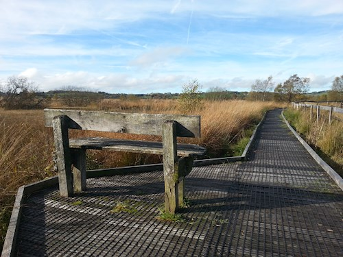 Boardwalk at Cors Caron