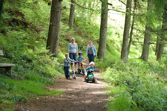 Family walk in a wood