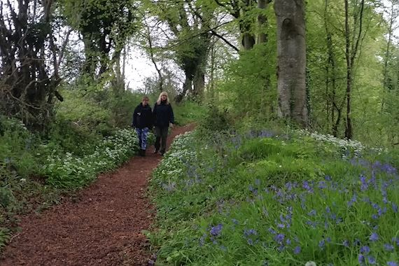 Two women on footpath looking at flowers