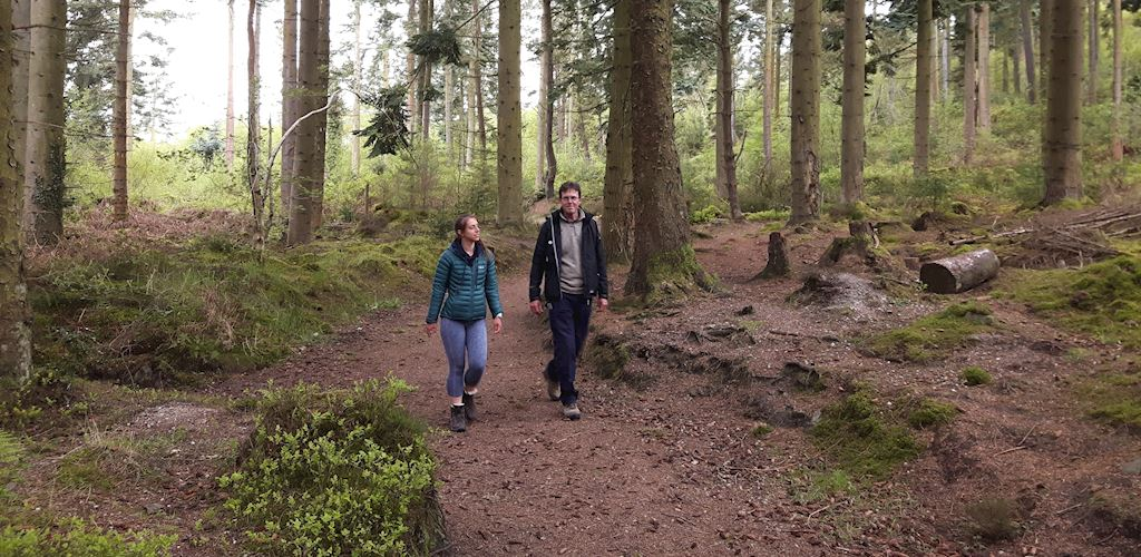 Man and woman walking in woodland