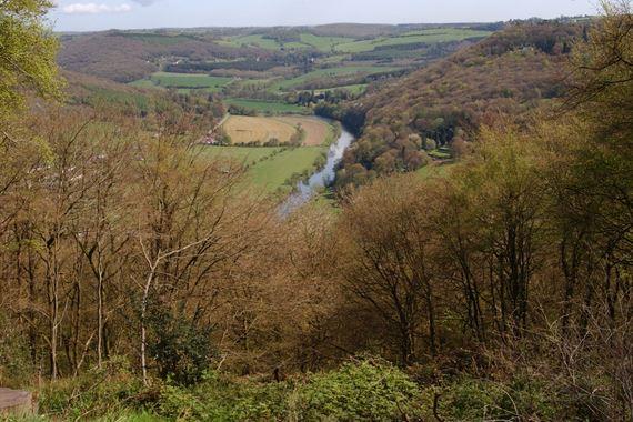 View from Whitestone
