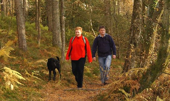 Man and woman walking in wood with dog in autumn