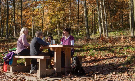 Teulu ar fainc picnic