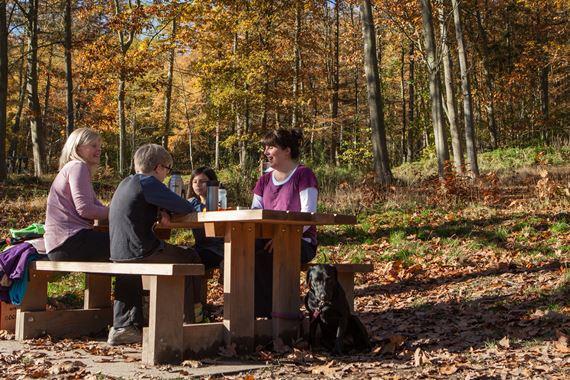 Family at picnic bench