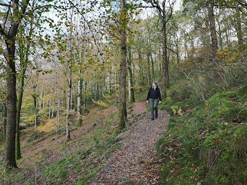 Woman on Cwm Cadian Trail