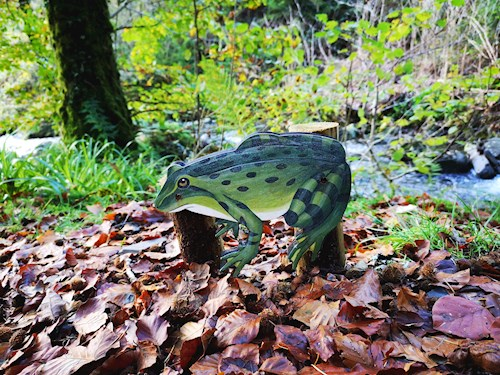 Frog on Animal Puzzle Trail