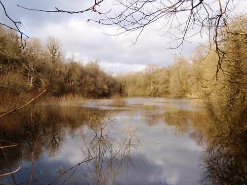 Pant y Llyn lake