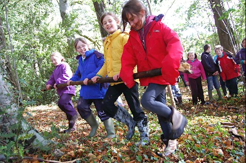 Children doing woodland workout exercises at a forest school