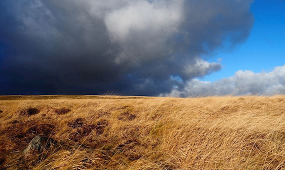 Windy uplands view with black clouds