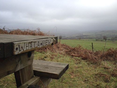 Carved bench in Llanwonnow reading 'What a view'