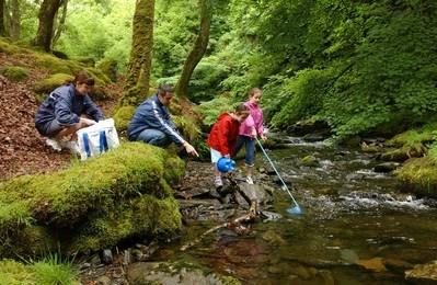 Family Fishing in a community woodland Dolgoch Falls, Tywyn, Meirionnydd