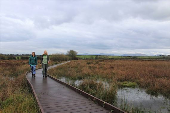 Cors Bodeilio National Nature Reserve On Anglesey, With Board Walk Improving Access To Enable People Of All Abilities To Experience This Sup