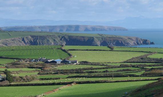 Ffermio ym Mhen Llyn, Gwynedd, Porth Felin, Uwch Mynydd
