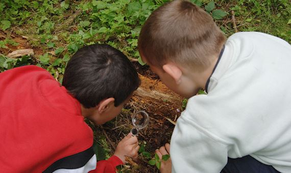 Children with magnifying glass in woodland